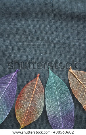 Colorful dried leaves put on gray fabric background - stock photo