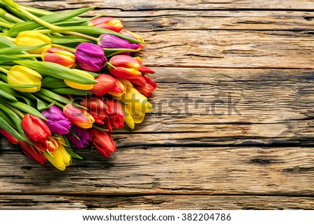 Colorful easter eggs and tulips placed on wooden planks - stock photo