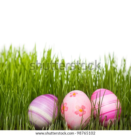Colorful Easter eggs. Hand painted colorful Easter eggs arranged in natural green grass on white background.