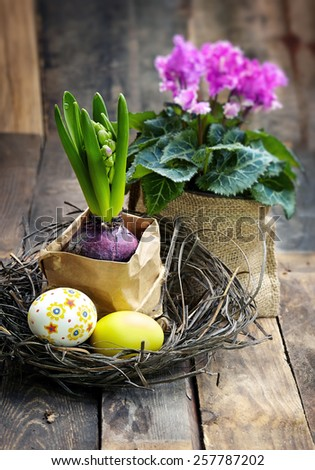 Colorful easter eggs in a nest  with pink  cyclamen on wooden background - stock photo