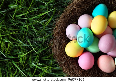 Colorful easter eggs in nest on meadow - stock photo