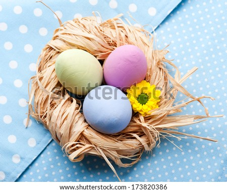 Colorful Easter Eggs in the nest on blue napkin - stock photo