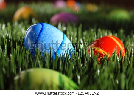 Colorful easter eggs nestled in green grass with dewdrops and natural sunlight with shadows.  Closeup with shallow dof.  Selective focus on blue egg. - stock photo