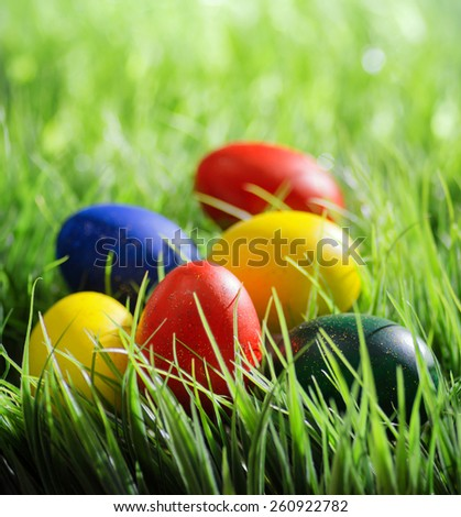 Colorful Easter eggs on green grass in the morning. Yellow, red, green and blue eggs painted for the Easter. Organic healthy eco food rich in minerals and vitamins. - stock photo