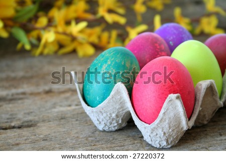 Colorful Easter eggs with a shallow depth of field and selective focus.  Used forsythia in the background to add a Spring feeling. - stock photo