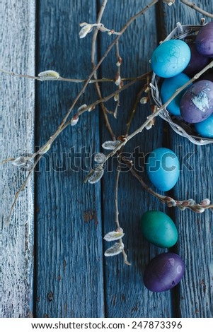 Colorful Easter Eggs with spring shoots an old aged scored blue wooden surface, Top view. Rustic style  - stock photo