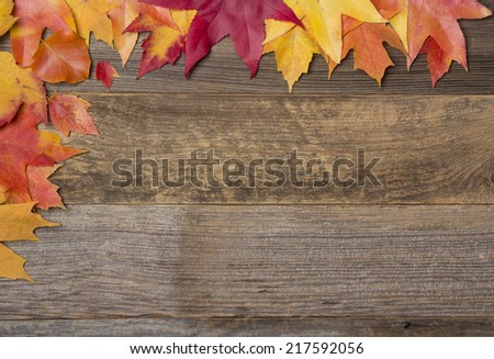 Colorful Fall Autumn Leaves On Wood Background With Blank Space - stock photo