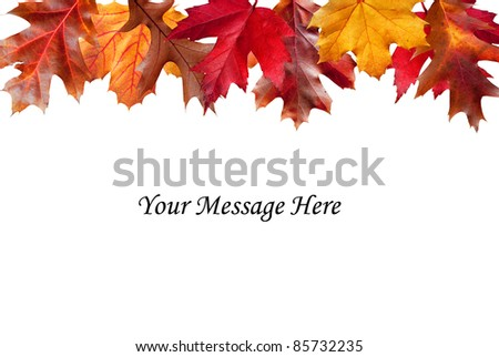 Colorful Fall foliage edging a white message area - stock photo