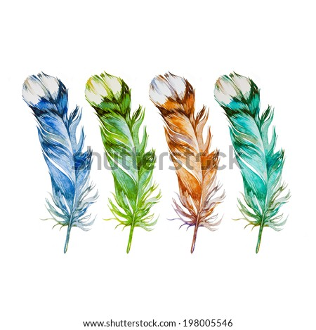 Colorful feathers isolated on white background. Watercolor picture. - stock photo