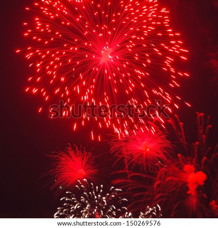 Colorful firework - stock photo