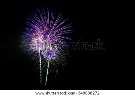 Colorful fireworks light on the black sky