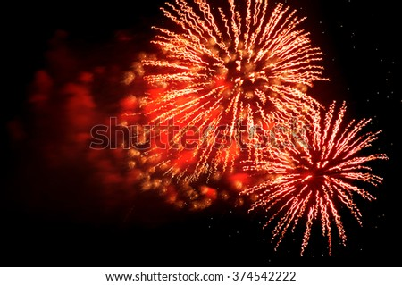 Colorful fireworks on the black sky background display for celebrations