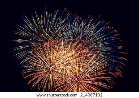 Colorful fireworks, salute on the background of the black sky
