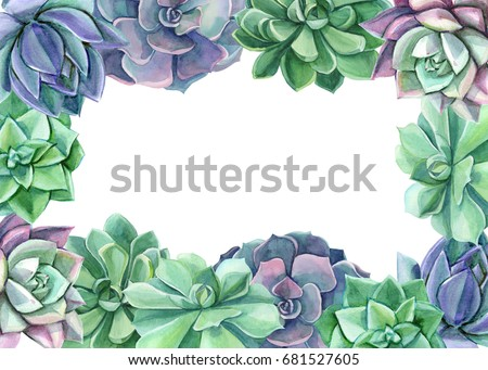 Colorful Floral Frame Watercolor Succulents Perfect Stock ...