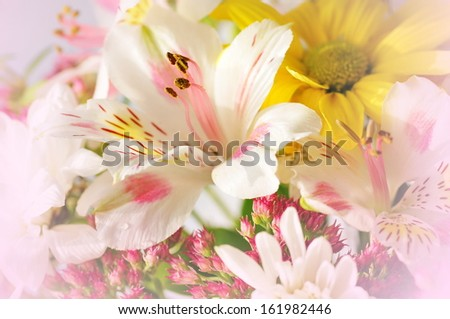 Colorful flower bouquet - stock photo