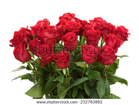 Colorful Flower Bouquet from Red Roses Arrangement Centerpiece Isolated on White Background. Closeup. - stock photo