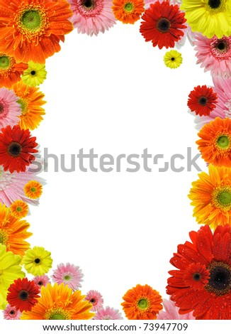 colorful flower frame isolated on white background - stock photo