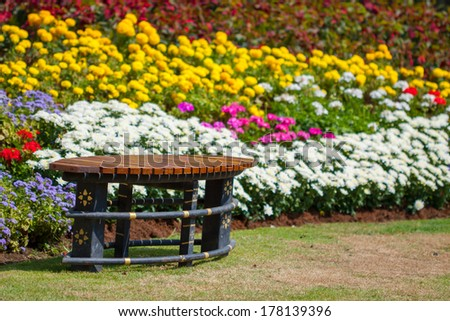 colorful flower in the garden, flower garden background - stock photo