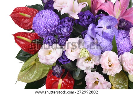 colorful flowers - stock photo