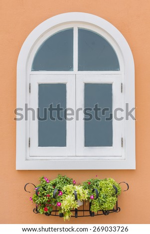 Colorful flowers adorn potted ornamental plant. - stock photo