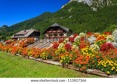 Colorful flowers and traditional guesthouses in Sankt Wolfgang area, Austria - stock photo