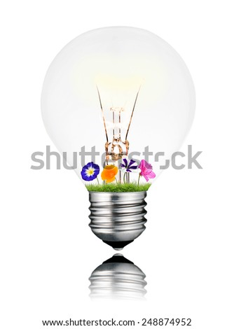 Colorful Flowers Growing Inside Switched ON Light Bulb Isolated on White Background. Light bulb has a reflection - stock photo