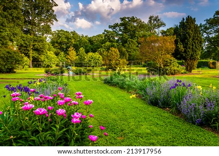 Colorful flowers in a garden at Druid Hill Park, in Baltimore, Maryland. - stock photo