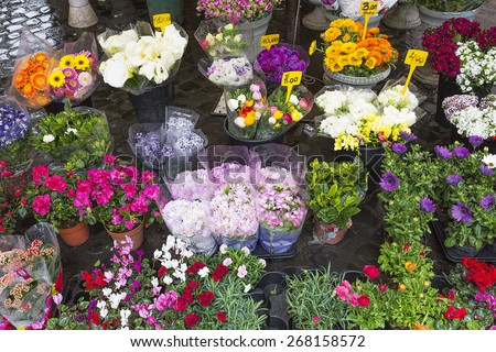 Colorful flowers on display on a market in Rome, Italy - stock photo