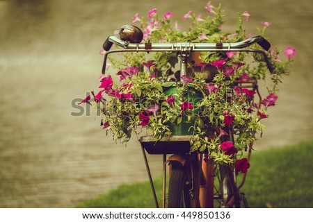 Colorful flowers pot on old bicycle, vintage style - stock photo