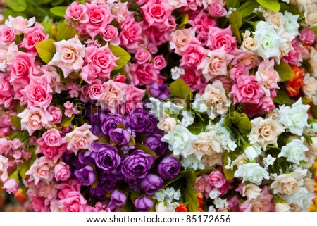 colorful flowers that are beautiful and varied - stock photo