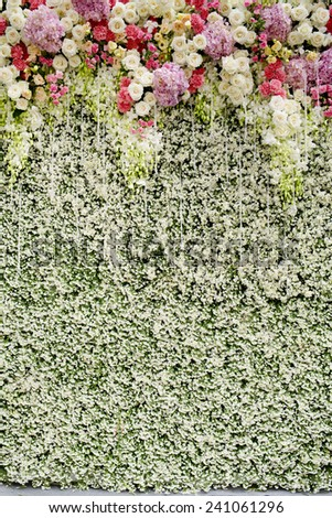 Colorful flowers with green wall for wedding backdrop - stock photo