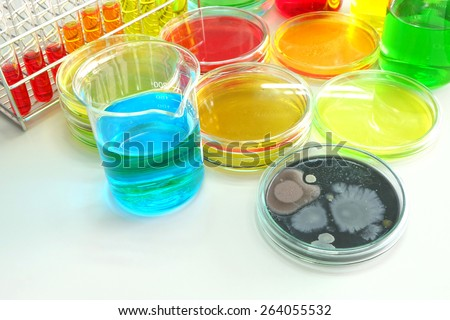Colorful fluid in  glass ware for laboratory use focusing center at colony of yeast - stock photo