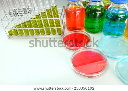 Colorful fluid in petridish and test tube for laboratory use on table laboratory - stock photo