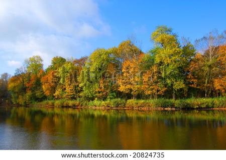 colorful fresh autumnal forest under blue sky