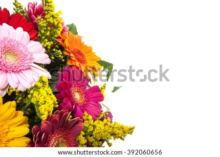 Colorful gerbera  bouquet  on a white background