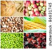 Colorful healthy food collage - stock photo