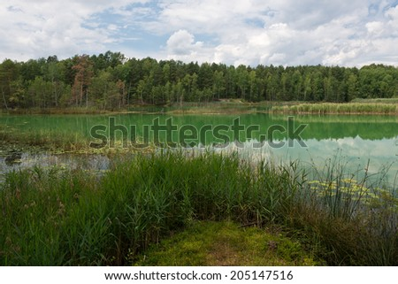 Colorful lake in the Muzakow Arc, Poland