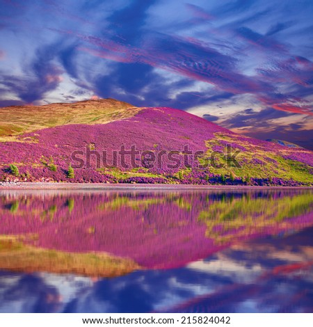 Colorful landscape scenery of hill slope covered by purple heather flowers, mountains and cloudy sky reflected in the water. Pentland hills, Scotland - stock photo