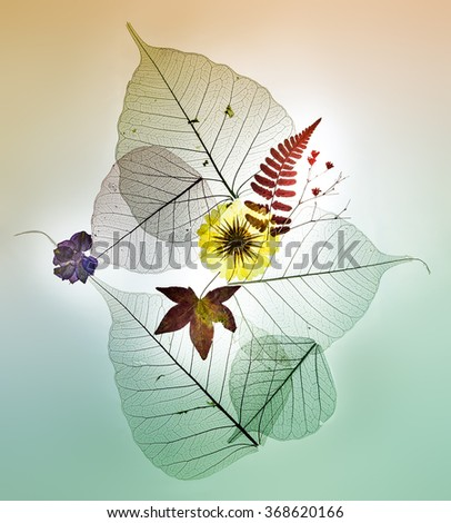 Colorful leaves silhouettes on pastel background with flowers - stock photo