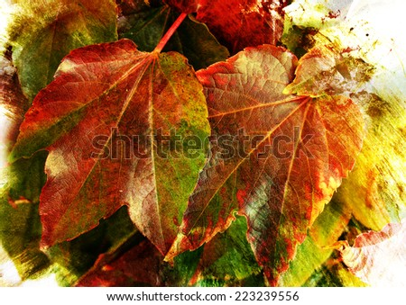 colorful leaves - styled picture with watercolor texture - stock photo