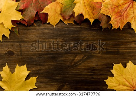 Colorful maple leaves on wooden background. Thanksgiving, autumn. - stock photo