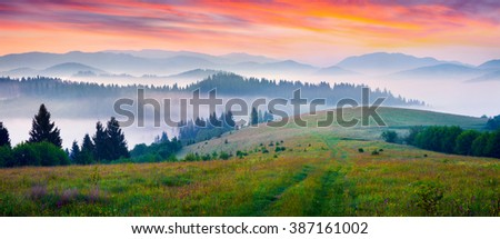 Colorful morning panorama of foggy mountains. Summer sunrise in carpathians, Borzhava mountain range, Transcarpathian, Ukraine, Europe. - stock photo
