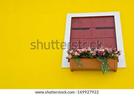 colorful of artificial flower for window decoration on yellow background