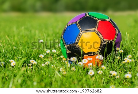 Colorful old football ball in flowers on the grass - stock photo