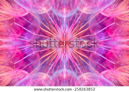 Colorful pastel background - Vivid color abstract dandelion flower - extreme closeup with soft focus, beautiful nature details - extremely high resolution symmetrical composition  - stock photo