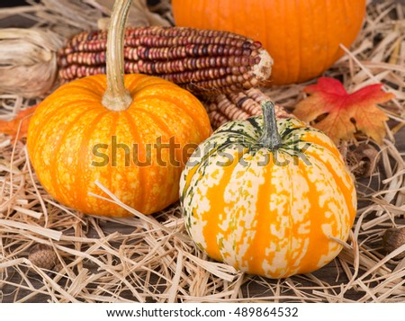 Colorful pumpkin and squash on a straw covered surface