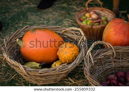 Colorful pumpkins in basket with apples and pepper on the hay background - stock photo