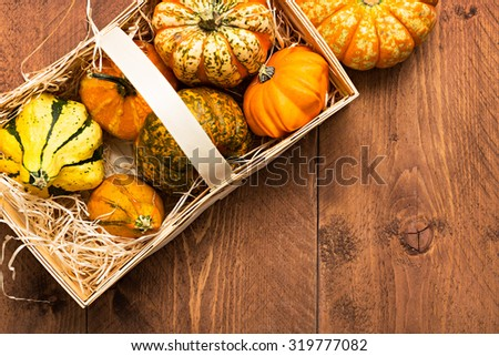 Colorful Pumpkins on wooden background - Halloween, Thanksgiving - stock photo