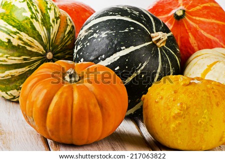 Colorful pumpkins on  wooden background. Selective focus - stock photo
