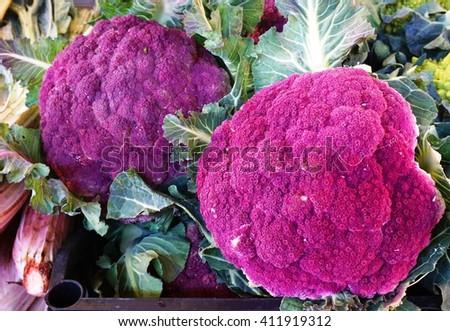 Colorful purple cauliflower at an Italian farmers market - stock photo